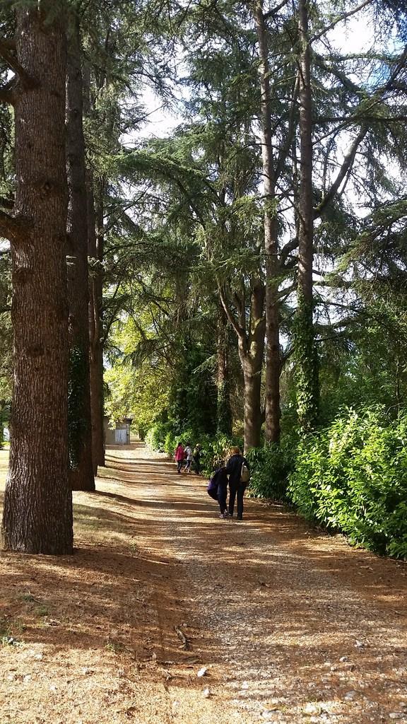 Journée du Patrimoine marcheurs dans les jardins de l'Hôpital de Monbran